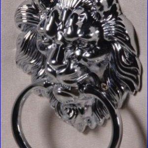 Lion Knocker detail on back